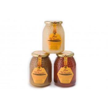 Miel de 1000 Flores 1 kg