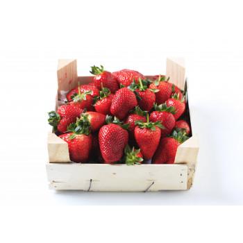 Fresas Caja 1 Kg