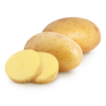 Patata Blanca Nueva